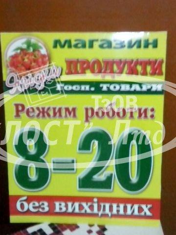 nesvvyvisky-31