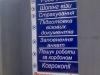 nesvvyvisky26